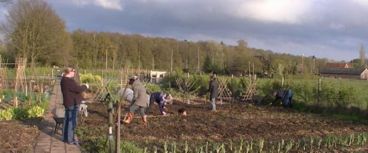 Op de foto is Team De Woelmeisjes in actie: vanaf begin april tot eind september is er op 50 avonden gewerkt in de voedseltuin.