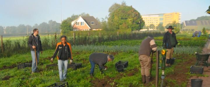 Tuinieren past ook goed bij u als u kiest voor een gezonde leefstijl (© Nico Stroes).