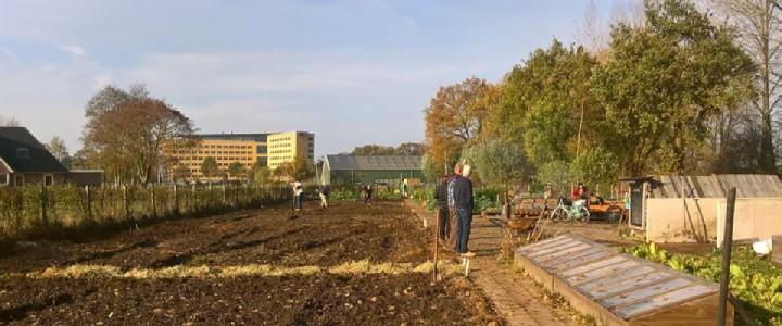 De voedseltuin van biologische moestuin vereniging in de late herfst