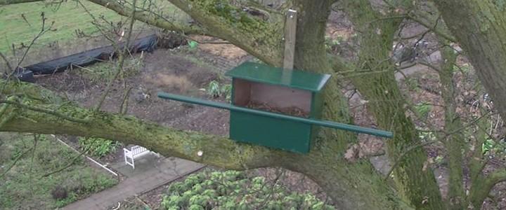Op de foto een nestkast voor torenvalken, hoog boven de moestuin.