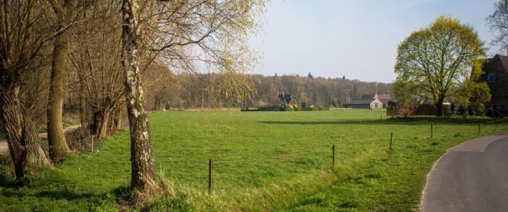 Het weiland in 2014, waar wij onze grond krijgen voor het nieuwe moestuincomplex.