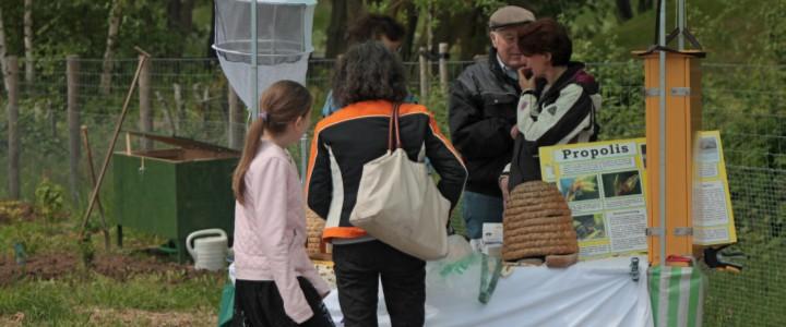 Bezoekers bekijken een informatiestand tijdens een Open Dag van de moestuinvereniging.