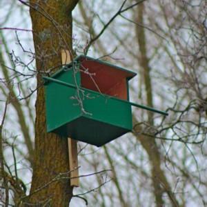 Nestkast voor torenvalk