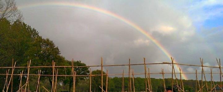 Regenboog over de moestuin.