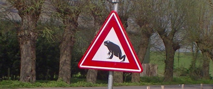 Verkeersbord overstekende padden.