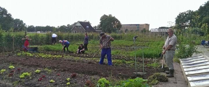 Werkverdeling: de werkcoördinatoren begeleiden de praktische uitvoering van het werk op de moestuin.